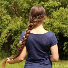Side Braid with Accent Braid