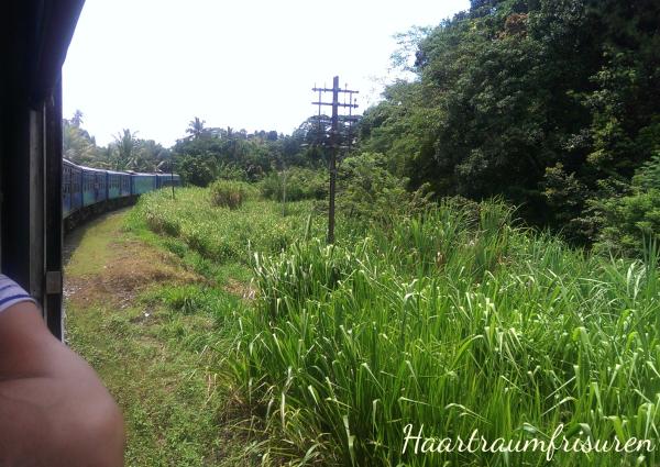 Aus dem Zug von Colombo nach Kandy